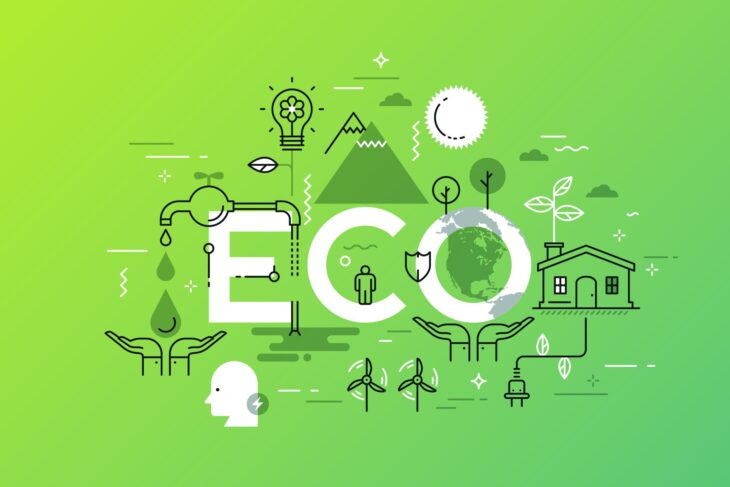 6 Eco-Friendly Changes Every Company Should Make